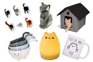 18 Unique Gifts And Gadgets For Cat Lovers