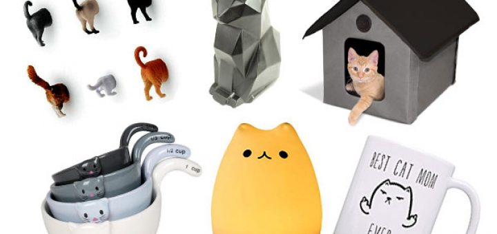best-cat-gadgets