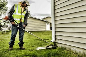 Cleaning Up Your Yard? Learn About Weed Eaters